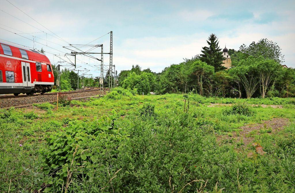 Seit dem Jahr 2000 ist  ein 3600 Quadratmeter großes Gelände in  Herrenberg  Brachland – nicht weit  von der Altstadt und der Stiftskirche entfernt.Foto:factum/Granville Foto: