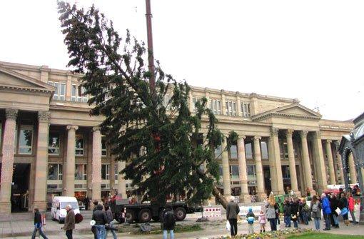 Mit einem Autokran wird der etwa 60 Jahre alte Nadelbaum vor dem Königsbau aufgestellt. Foto: in.Stuttgart