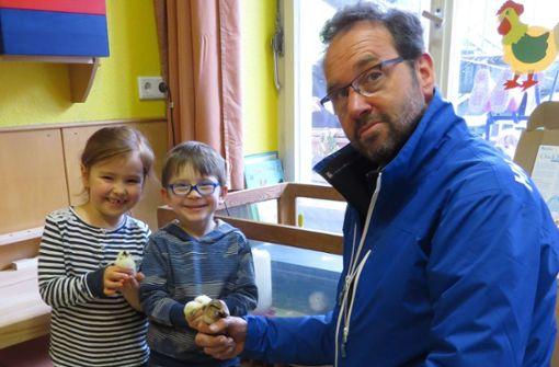 Osterküken im Kindergarten