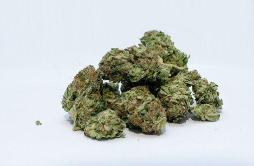 Dealer will Cannabis verkaufen