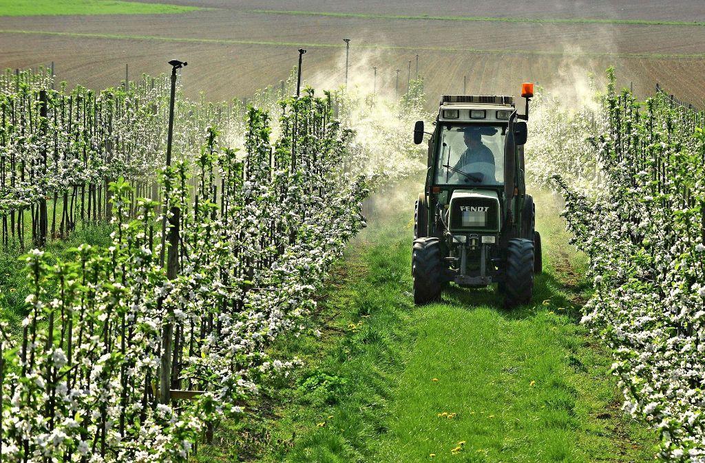 Zwischen 15- und   40-mal im Jahr müssen die Obstbauern im Land ihre Plantagen spritzen. Foto: Rüdiger Bäßler, Visum
