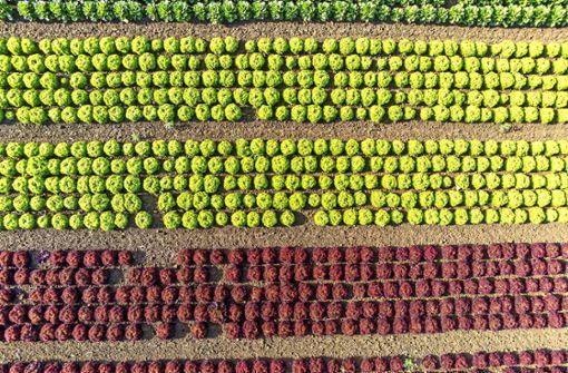 Zwischen Landwirtschaft und Flächenverbrauch