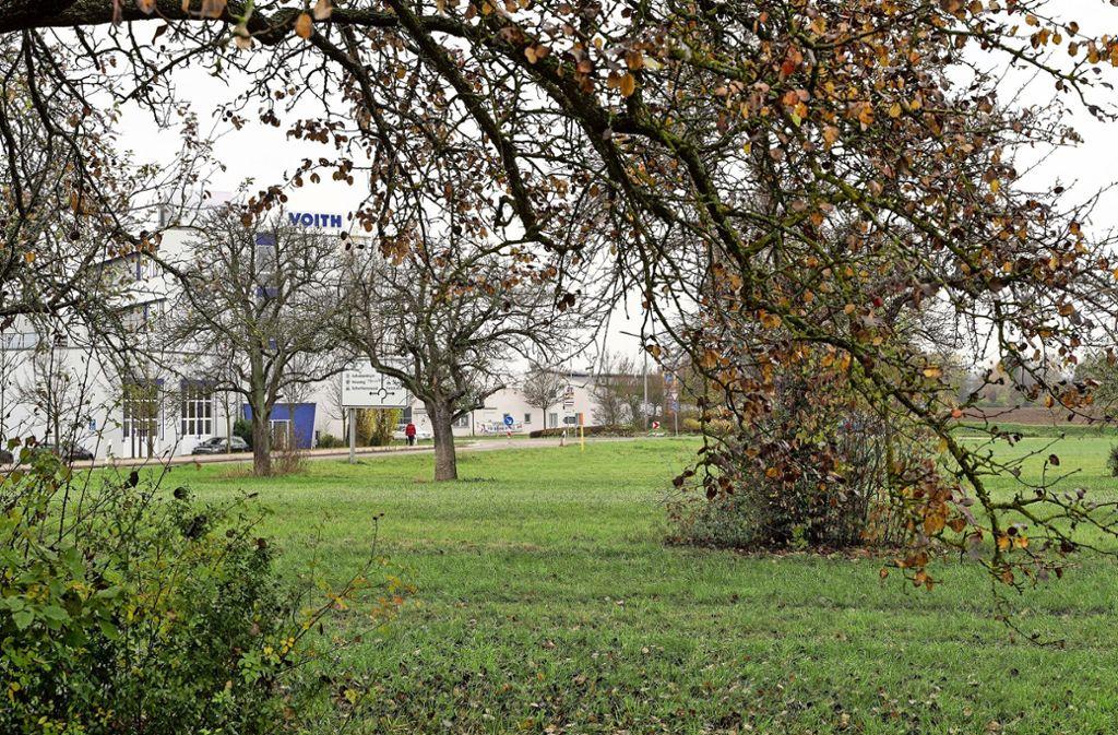 Für die 78 Obstbäume, die wegen des neuen Gewerbegebietes  gerodet werden, wird die Stadt 150 neue pflanzen lassen. Foto: factum/JArchiv