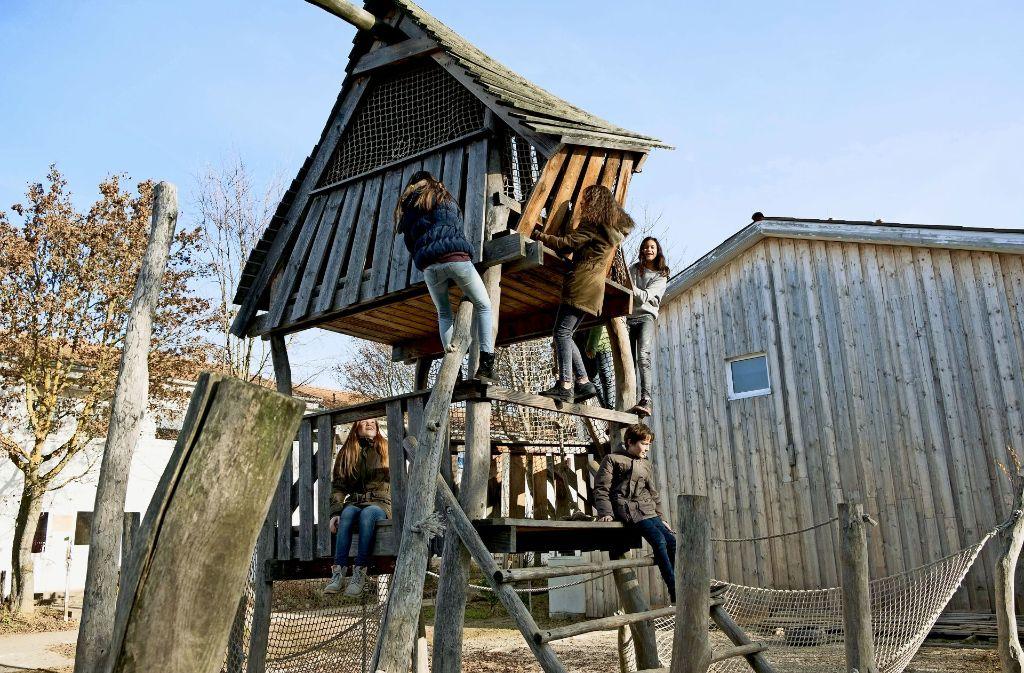 Gemeinschaftswerk: Beim Bau des Kletterturms halfen   Mitarbeiter von Ernst & Young. Foto: Lichtgut/Achim Zweygarth