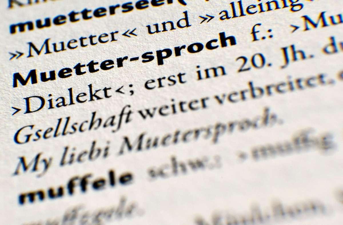 Auszug aus einem Mundart-Wörterbuch. Foto: dpa/Tobias Kleinschmidt