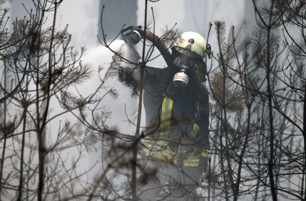 Feuerwehrmänner kämpfen bei Berlin gegen die Waldbrände. Foto: dpa
