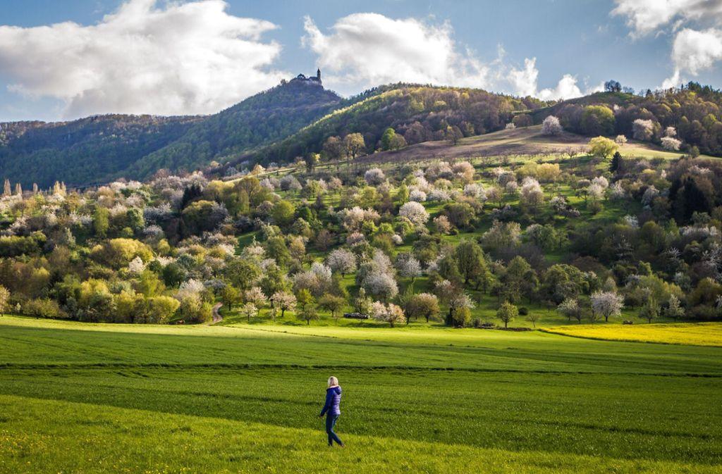 Landschaft genießen und abschalten, das geht gut bei einer Wanderung, etwa hinauf zur Burg Teck. Foto: Alexander Kijak