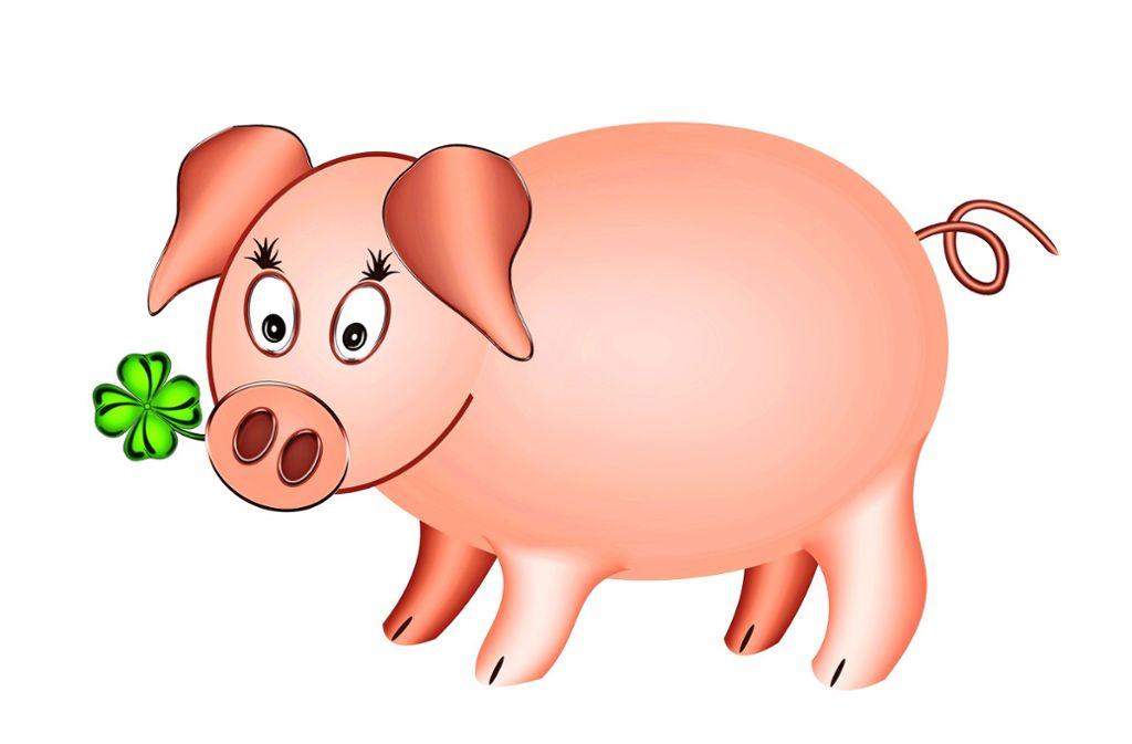 Hier sehen Sie: ein nettes Schwein Foto: Gabriele Rohde / Adobe Stock