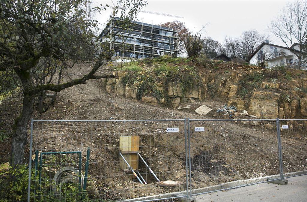 Viel hat sich an dem abgerutschten ehemaligen Steinbruch in Nürtingen-Zizishausen bisher  nicht getan. Foto: Horst Rudel/Archiv