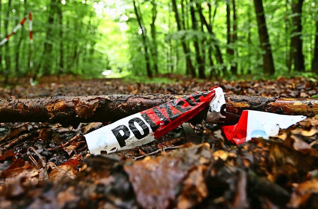 Die schreckliche Tat ereignete sich in einem Wald bei Bagheim (Symbolbild). Foto: dpa/Karl-Josef Hildenbrand