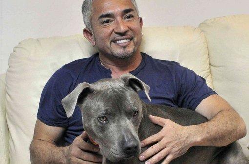 Man nennt ihn den Hundeflüsterer: Am 25. September kommt Cesar Millan auch nach Stuttgart. Foto: dpa