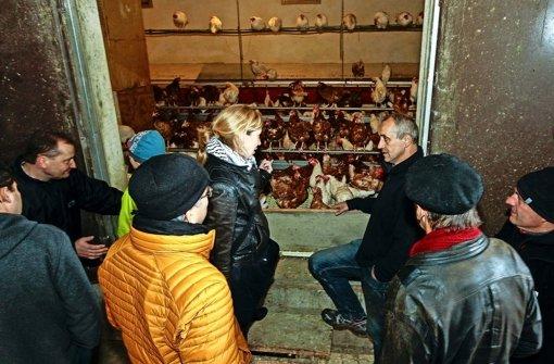 Geflügelhof: Offenheit auf kleinem Raum