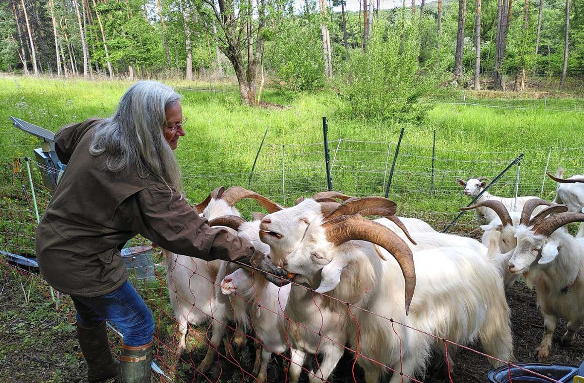 Einmal am Tag besucht Corinna Kistner ihre Herde. Foto: Judith A. Sägesser