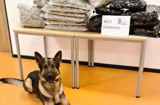 Rauschgiftspürhund Luc erschnüffelt 15 Kilogramm Marihuana