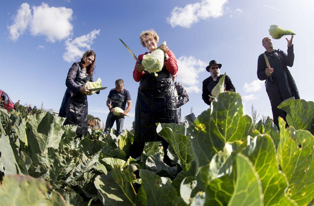 Im Oktober steigt wieder das Krautfest in Leinfelden-Echterdingen. Beim Krautstart hat auch die Erste Bürgermeisterin Eva Noller (Mitte) bei der Ernte mitgeholfen. Foto: Horst Rudel