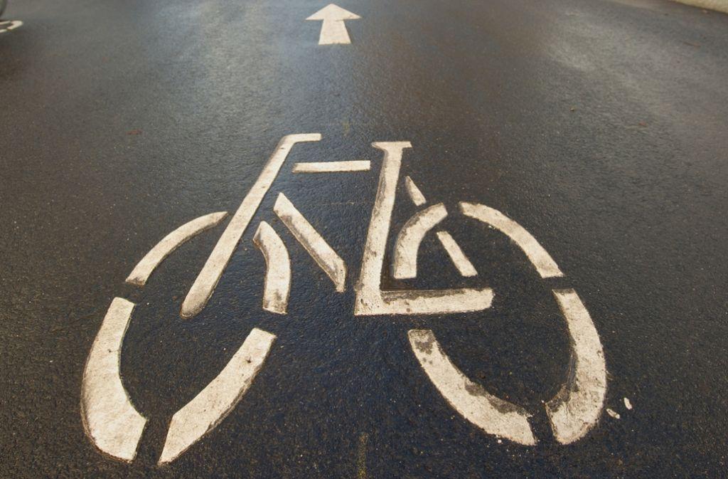 Ein Radweg als Streitfall Foto: dpa