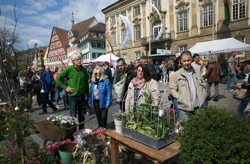 Die Esslinger Innenstadt ist am Sonntag gut besucht. Foto: Rudel