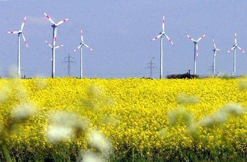 Lieber Windkraft statt Raps