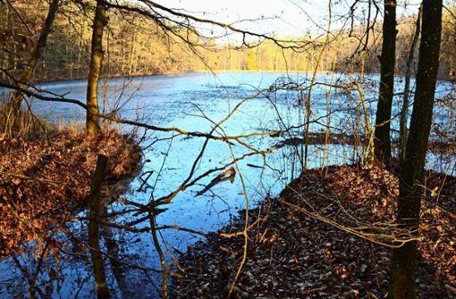Der Verkauf zweier Seen treibt die Leute um