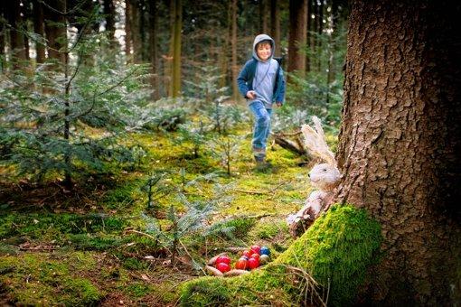 Auf Schnitzeljagd im Wald