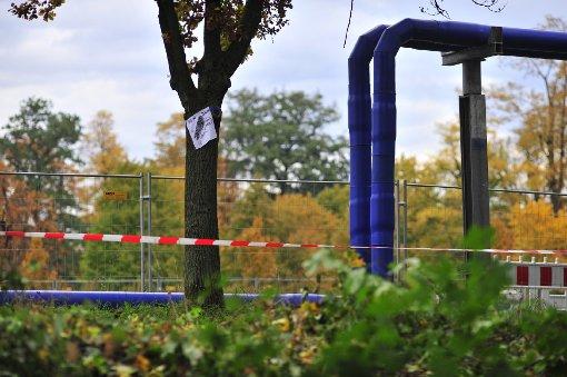 Unbekannte zünden Leitungsrohr im Rosensteinpark an