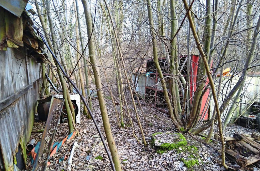 Der Waldboden  ist übersät mit Schrott, Bauschutt, Elektrogeräten und Altreifen. Foto: privat