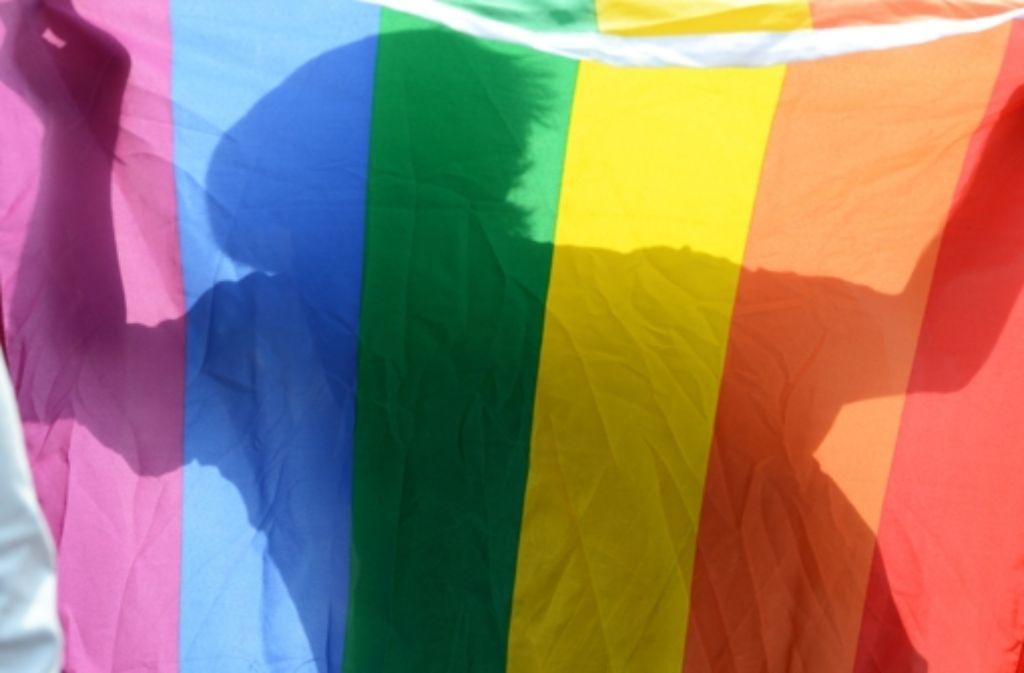 Über den neuen Bildungsplan an baden-württembergischen Schulen ist wegen des Unterrichtsthemas Homosexualität Streit ausgebrochen. Foto: dpa-Zentralbild
