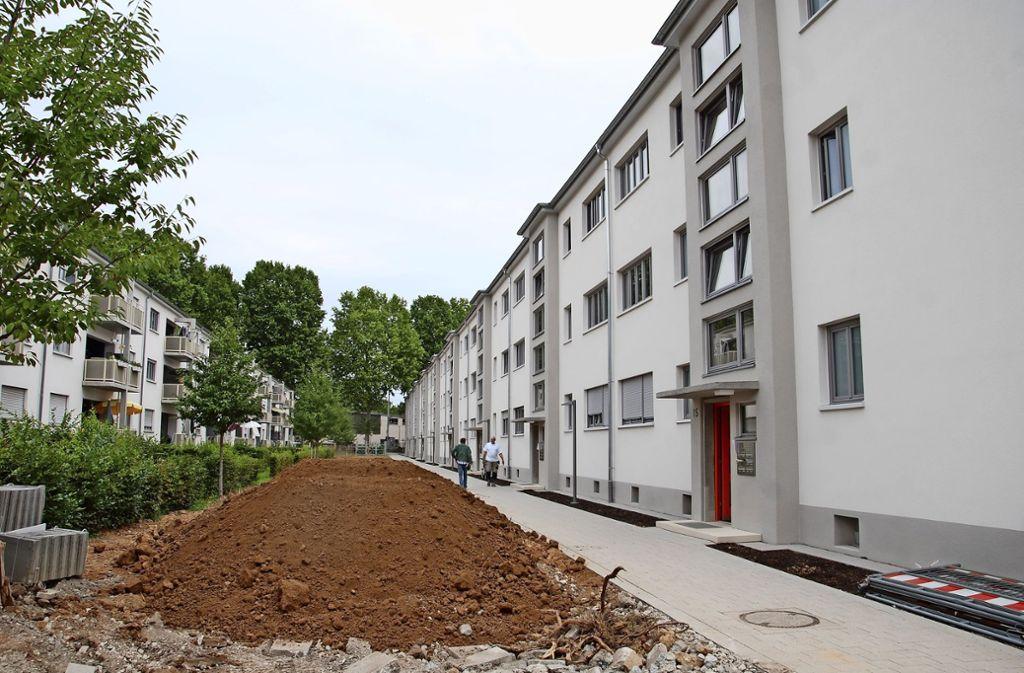 Nach elf Jahren ist die Modernisierung der Inselsiedlung beinahe beendet. Foto:
