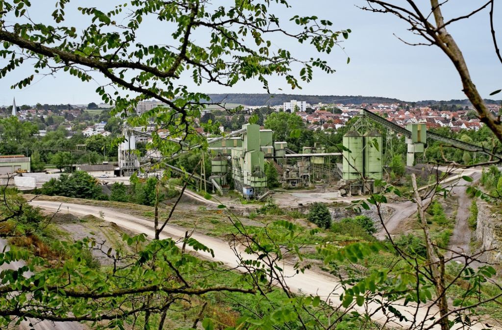 Was nun auf dem Areal des  Steinbruchs Fink geschieht, ist unklar. Foto: factum/Archiv