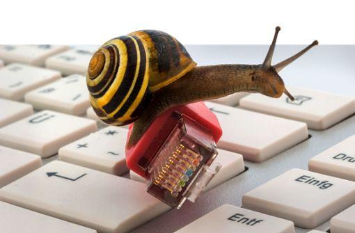 Internet-Anbieter stehen am Pranger