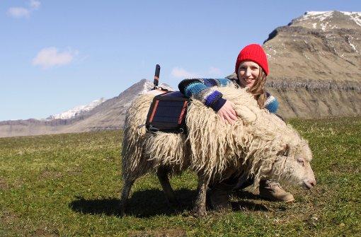 Wieso Schafe die Färöer-Inseln filmen