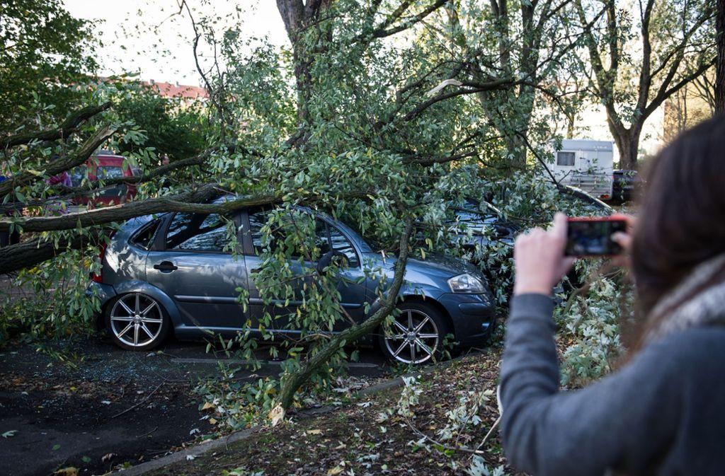 Auch Unfalltote sollen vor Gaffern geschützt werden (Symbolbild). Foto: dpa