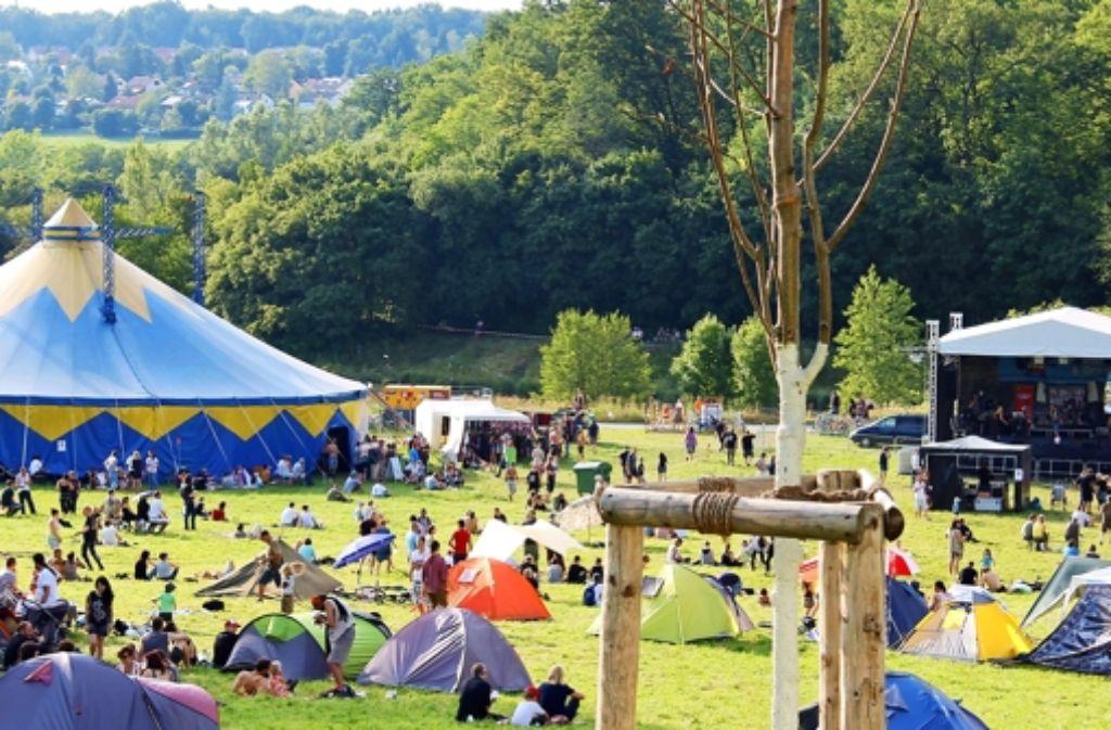 Im Zelt und auf der Bühne gaben sich die Bands beim Festival die Klinkenstecker in die Hand. Foto: Martin Bernklau