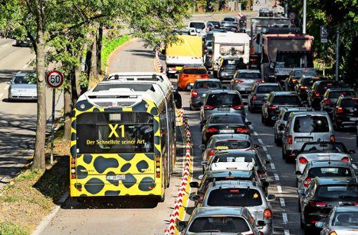 Was sagen die Ökoverbände zu Verkehrsbeschränkungen?