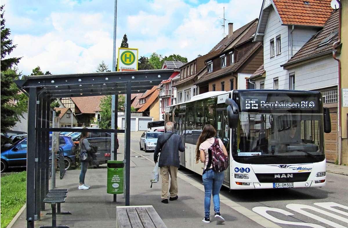 Ist die Bushaltestelle Gänswiese in Waldenbuch verzichtbar? Foto: Claudia Barner