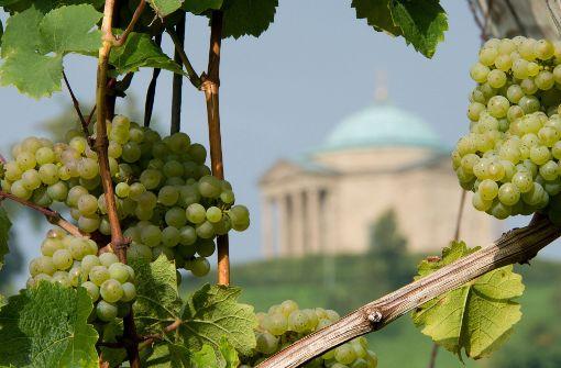 Deutsche kaufen lieber günstige Weine