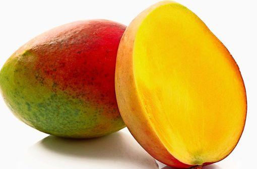 Die befallenen Mangos werden  verbrannt
