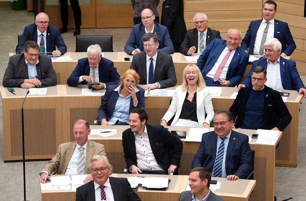Nicht nur die Abgeordneten  der AfD im Stuttgarter Landtag fallen immer wieder mit extremistischen Einlassungen auf –  auch Fraktionsmitarbeiter stoßen auf Empörung. Foto: dpa