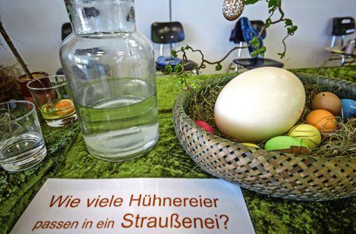 Der andere Blick auf das Ei