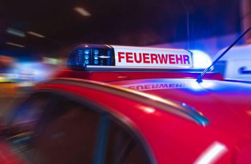 Junge Feuerwehrmänner als Brandstifter verurteilt