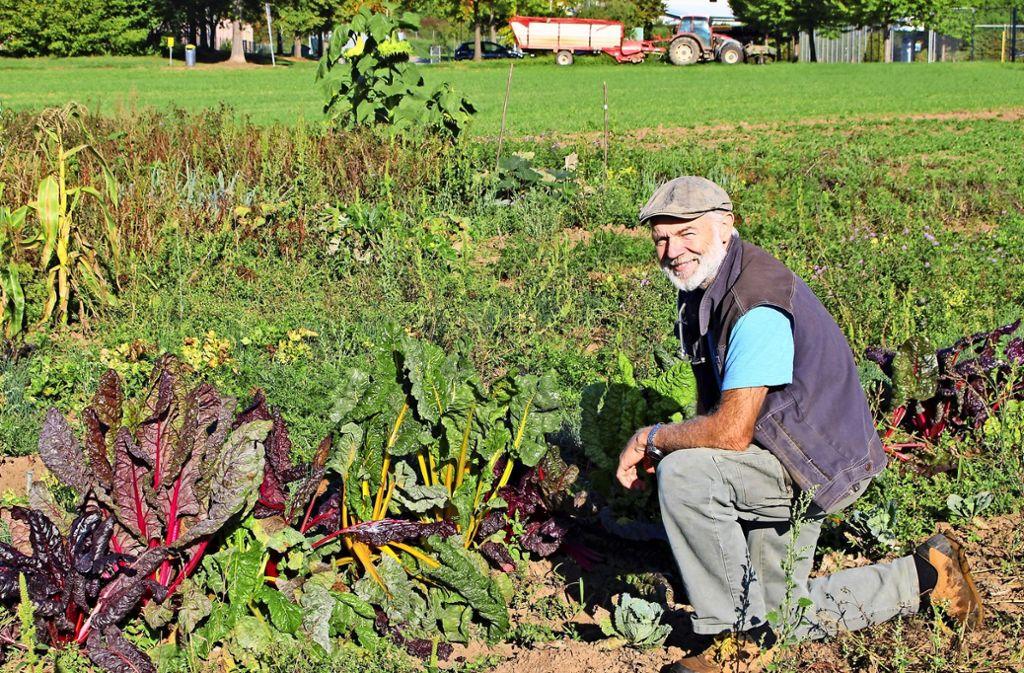 Klaus Wais aus Riedenberg vermietet eine rund 20 Ar große Ackerfläche. Foto: Holowiecki