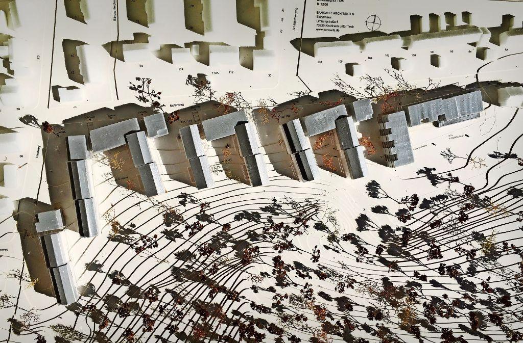 Am Molchweg in Bergheim  saniert die Landesbaugenossenschaft ihren Bestand und verdichtet mit  Neubauten nach. Holzfassade und Laubengänge – so sehen die Neubauten der LBG aus. Foto: Bankwitz Architekten