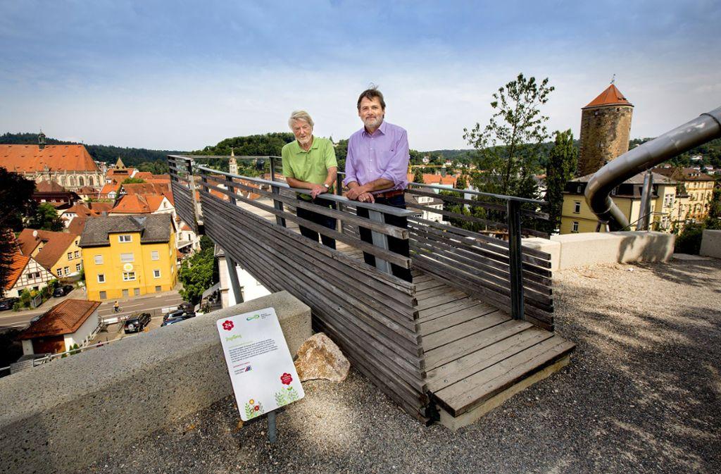 Der Landschaftsarchitekt Jörg Stötzer (links) und Stadtsprecher Markus Herrmann wagen sich auf die Aussichtskanzel auf dem Zeiselberg. Foto: