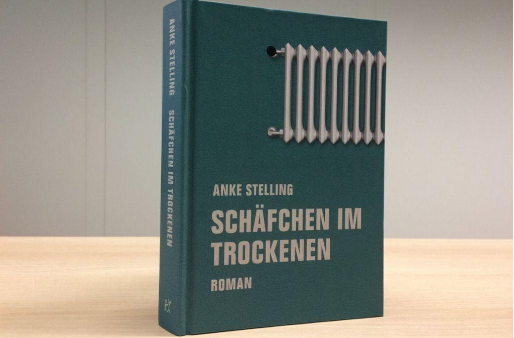 """""""Schäfchen im Trockenen"""" von Anke Stelling, Verbrecher Verlag,  22 Euro. Foto: Pav"""