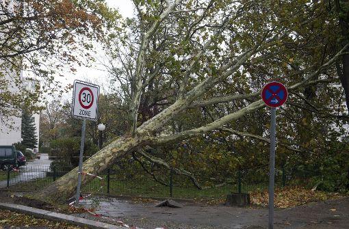 Sturm kippt Bäume, Bahn stoppt Züge