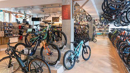 Diese Läden erfüllen dir deinen Fahrradwunsch