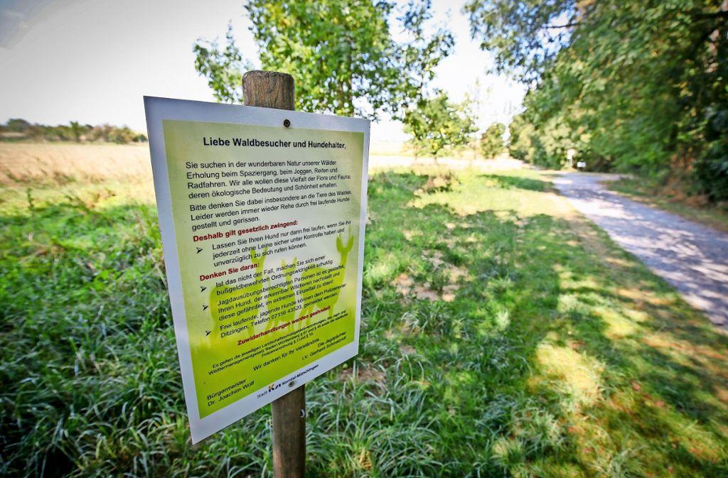 Über Regeln für Hundebesitzer klärt jetzt ein Schild am Eingang zum Seewald in Korntal-Münchingen auf. Foto: factum/Granville