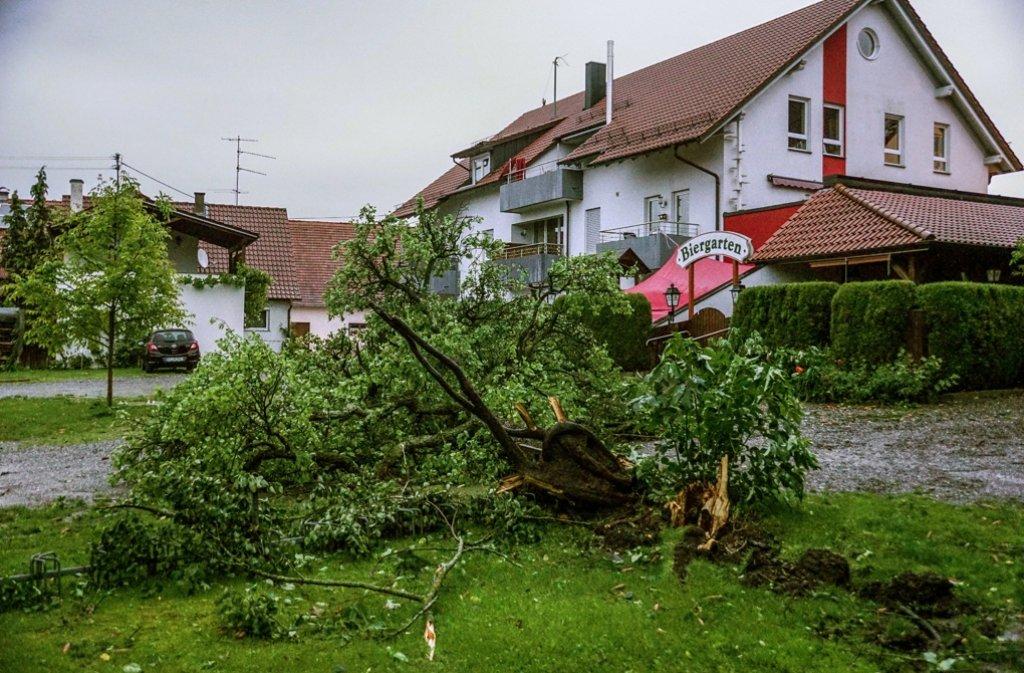 Eine Windhose hat in Bad Waldsee Bäume entwurzelt Foto: dpa