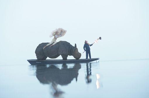 Was macht das Rhinozeros auf dem See?
