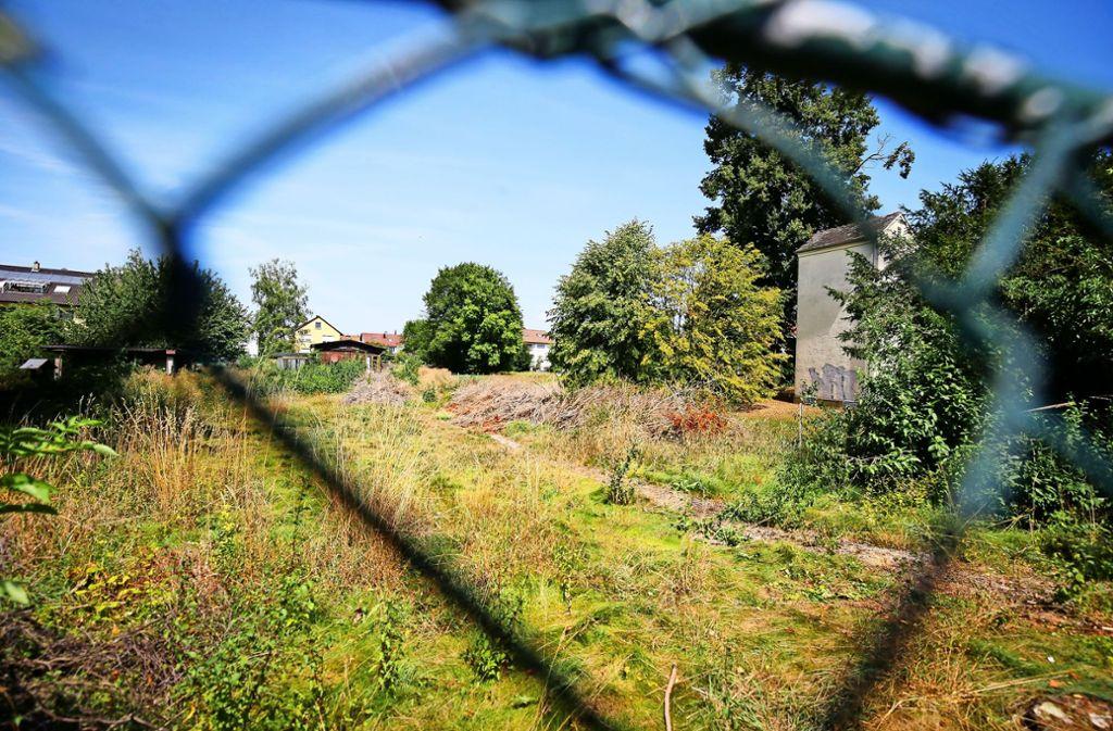 Hinter dem stillgelegten Brunnen darf nichts gebaut werden. Denn es handelt sich dabei noch immer um ein Wasserschutzgebiet. Foto: factum/Granville